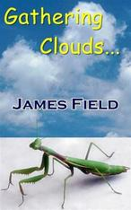 Gathering Clouds by James Field